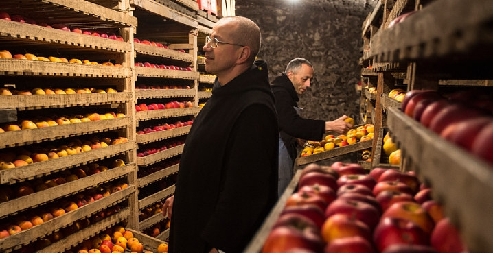 pommes moines Solesmes